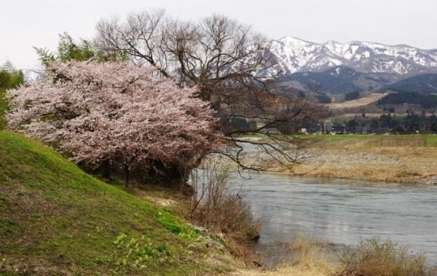 春の小川はさらさら・・・と(赤川)