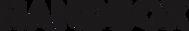 logo_handbox1.png