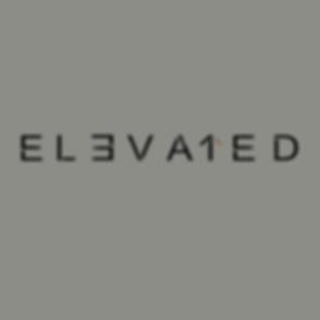 elev website.png