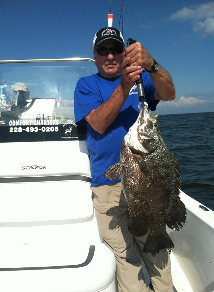 southern comfort tripletail