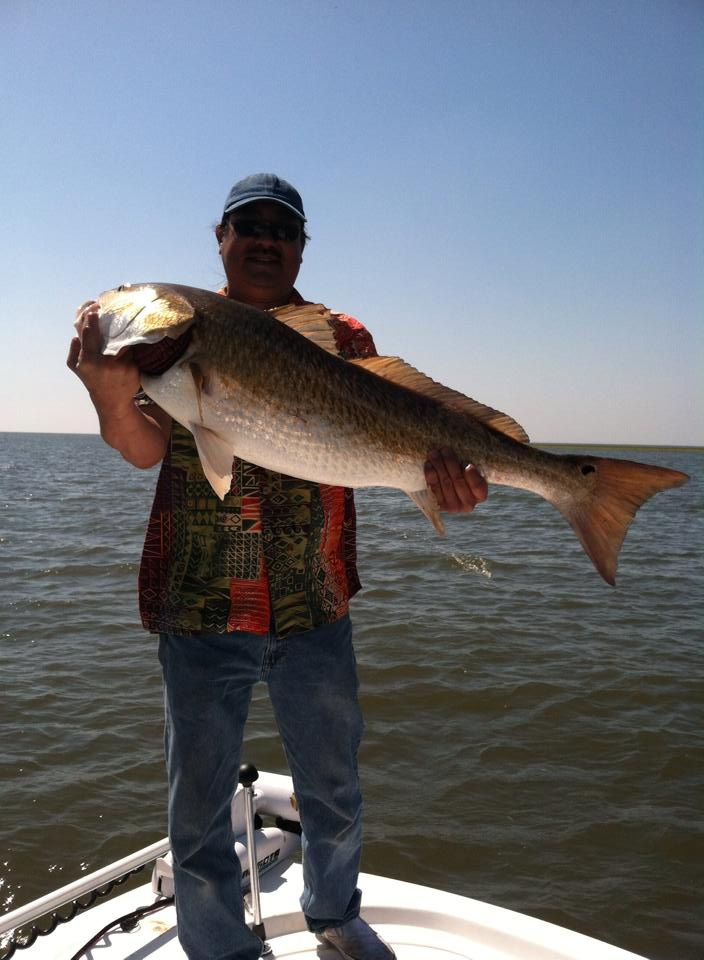bull red on southern comfort charter