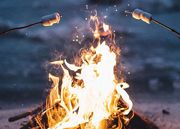 roasting marshmallows.jpeg