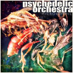 Artist: Psychedelic Orchestra - Microcosmic EP (Vinyl)
