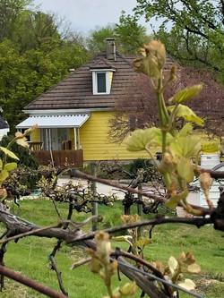 Yellow Farmhouse Vacation Rental