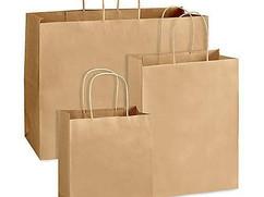 shopping-paper-bag-500x500.jpg