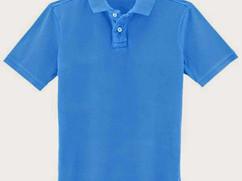 mens-polo-t-shirt-1062482.jpg