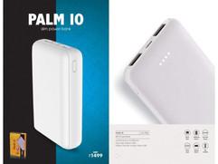 Palm 10.jpg