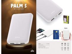 Palm 5.jpg