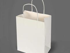 white-small-bags-500x500.jpg