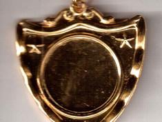 shield medals backside.jpeg