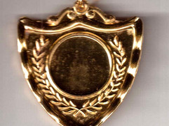 shield medals front.jpeg