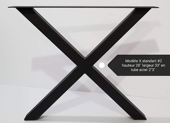 Modèle X standard #2