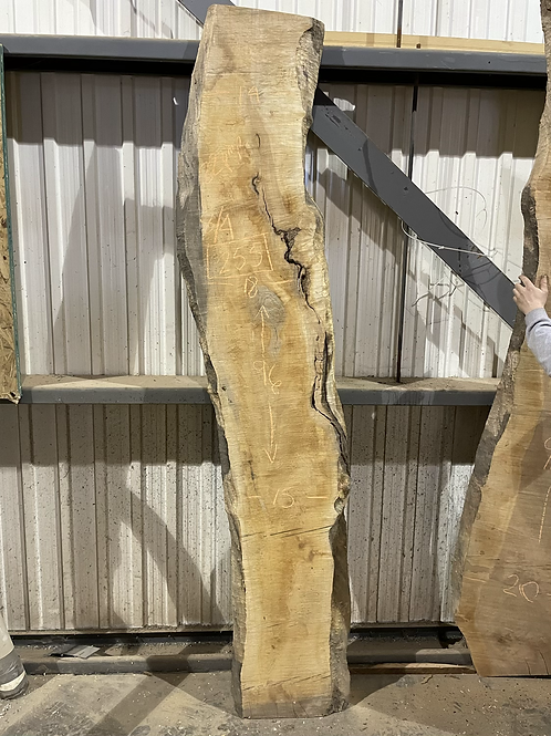 HARD CURLY MAPLE