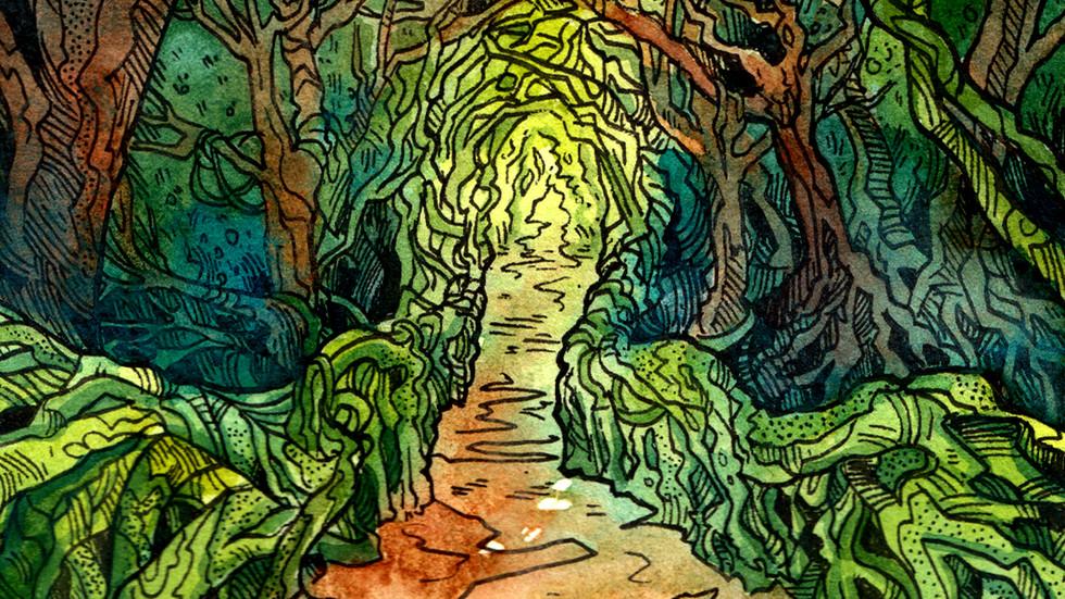 Vine Path