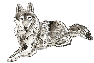inkwolfsm.png