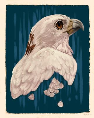 albinobird.jpg
