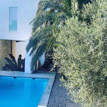 Casa desnuda_Vivienda zona loft campello