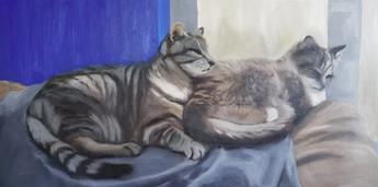 Painting Mentorship