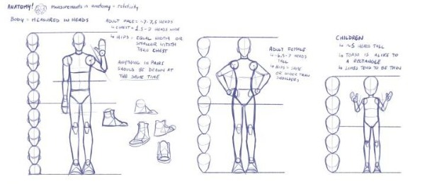 Figure Drawing Human Proportions