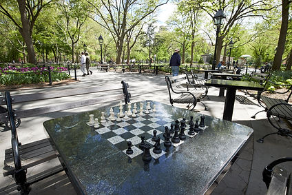 chess pic paid for .jpg