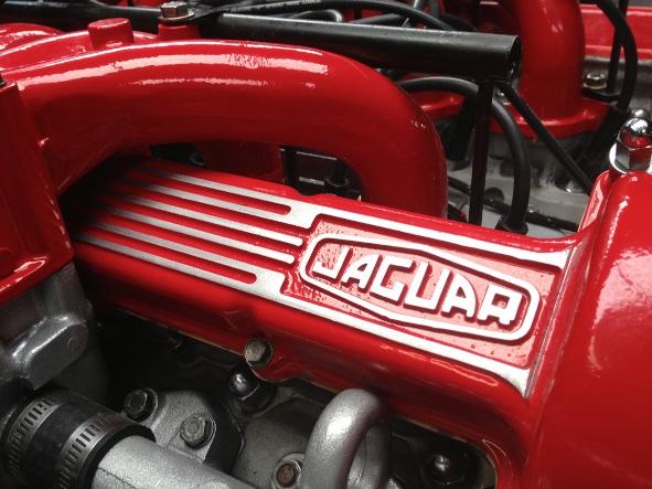 Jaguar Cover Red