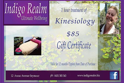 Indigo Realm Gift Voucher Kinesiology