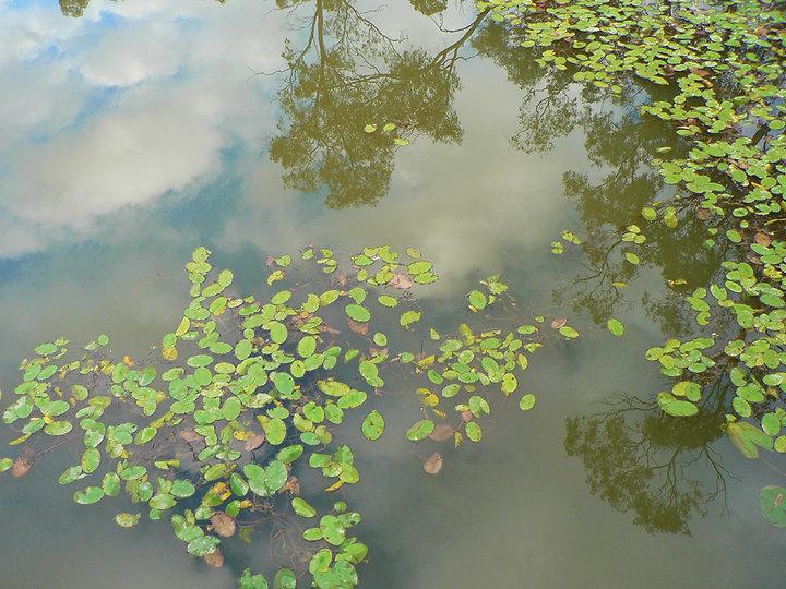 Nagambie Lakes