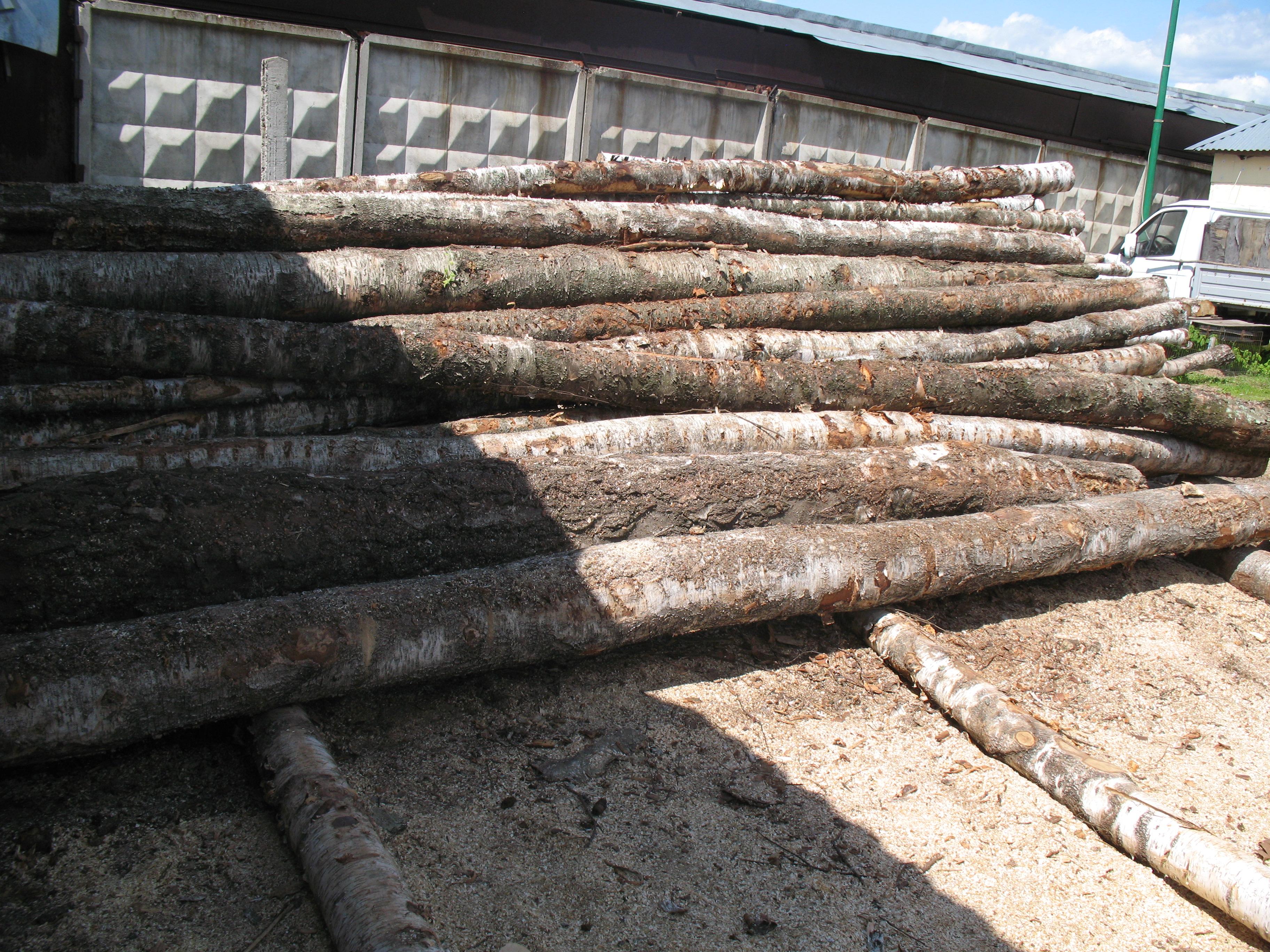 Берёза для производства колотых дров