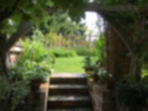 Radishes Roses 9.jpg