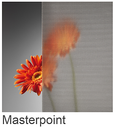 Masterpoint.png