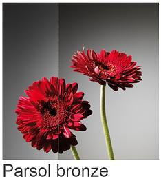 Parsol Bronce.png