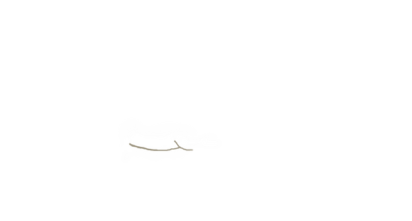 lowbelly.png