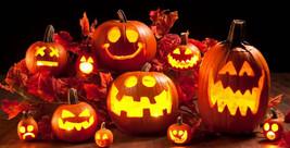 Dovleacul - mult mai mult decât o decoratiune de Halloween!