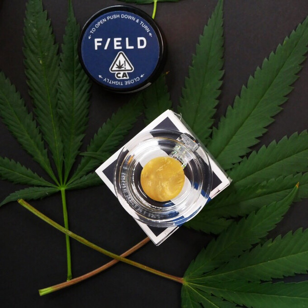 Field Extracts