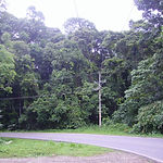 5-Paved Road & Power lines.JPG