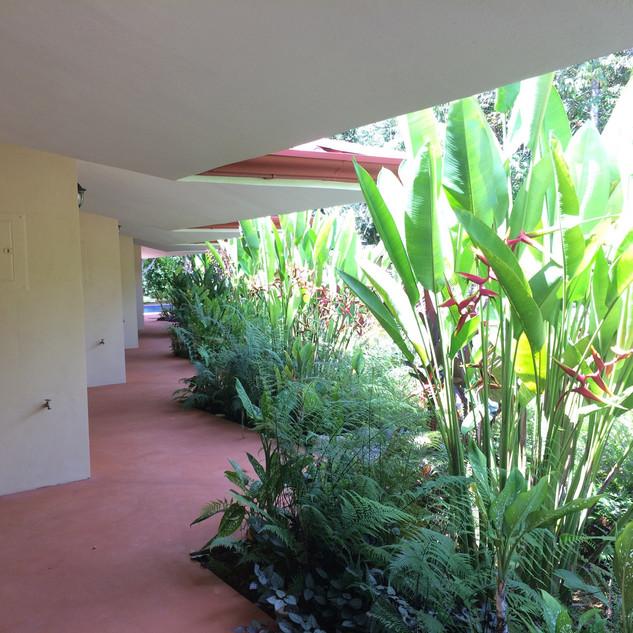 20 gardens.JPG