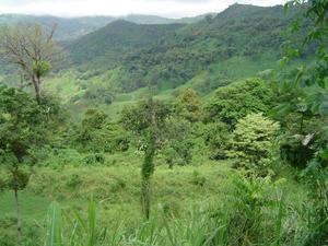 7 Valley.jpg
