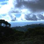 6-Platanillo Ocean.jpg