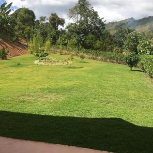 24 lawn.JPG