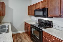 Lower Unit Kitchen 2