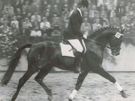 Influential Horses: RUBIN