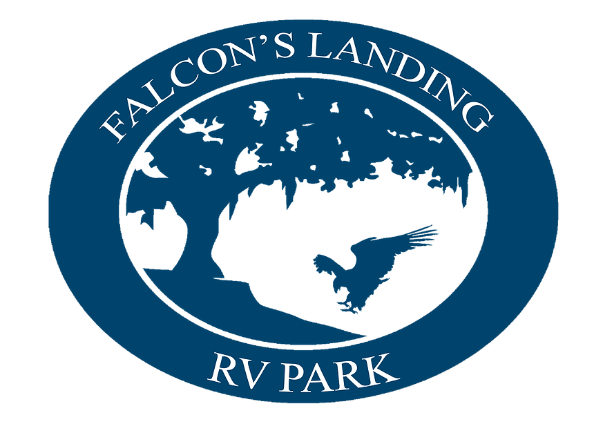 FalconLandingWebsite030620.png