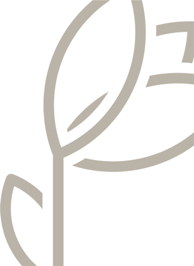 Logo VFE2.png