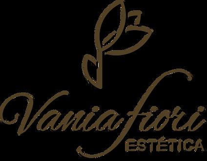 Logo VFE.png