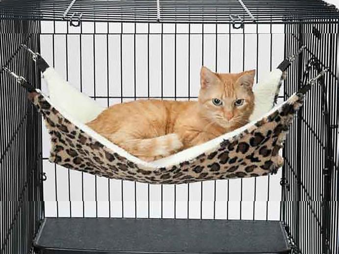 cat cage.jpg