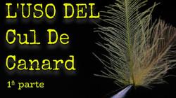 L'USO DEL CUL DE CANARD 1ªPARTE