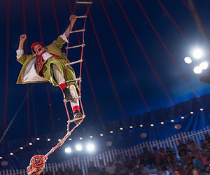 _Zoppe Circus 10-19-2014-41.jpg
