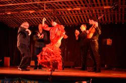 359_22jul17-soirée_flamenco_V._Paez
