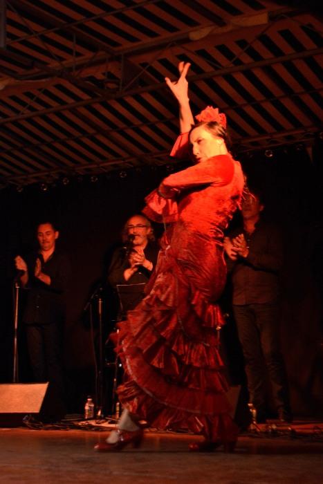340_22jul17-soirée_flamenco_V._Paez