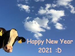 Happy New Year 2021 - Shiori's diary